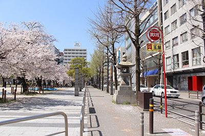 土居通りを挟んで右が蝶和ビル。左が冷泉公園