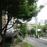 ichiutoha10