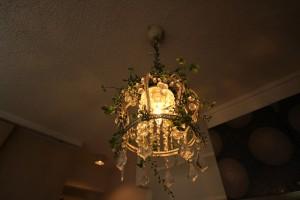 照明 植物
