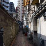 kiyokawa_003