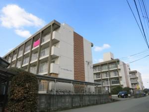 コーポ江戸屋敷